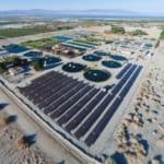 Công nghệ nuôi cá trên sa mạc đạt năng suất cao của Israel