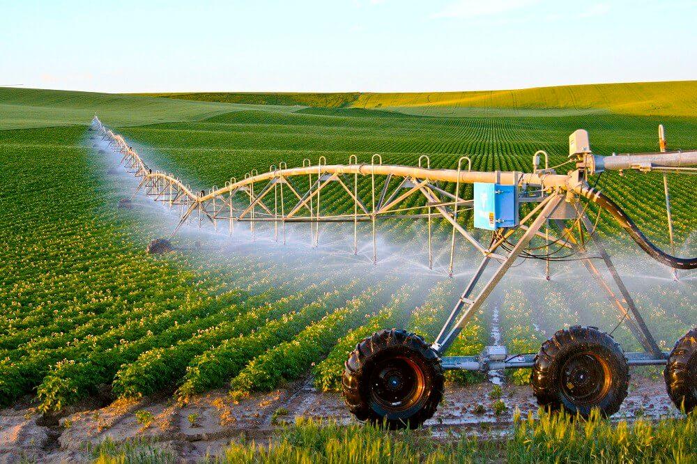Nền nông nghiệp Israel kỳ tích trên hoang mạc khô cằn