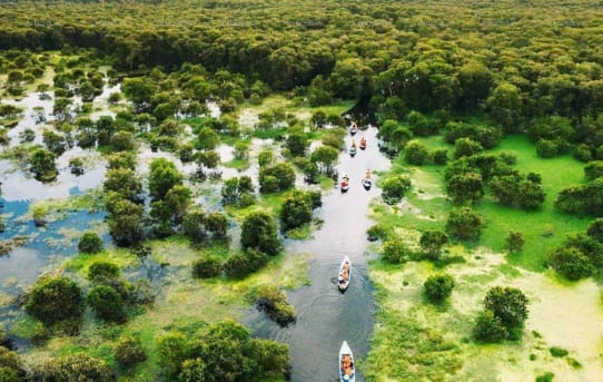 Tìm về rừng Tràm Trà Sư – Địa điểm sống ảo được lòng giới trẻ